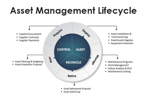 asset management software lifecycle
